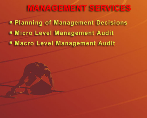 The Management Services